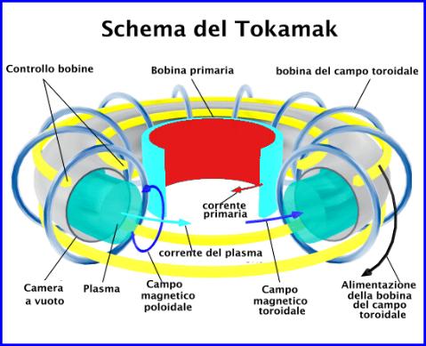 tokamak11